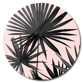 Fan Palm Leaves Jungle #2 #tropical #decor #art