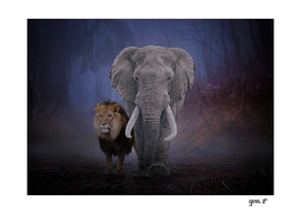 Lion & Elephant by GEN Z
