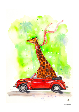 Giraffe in a Beetle