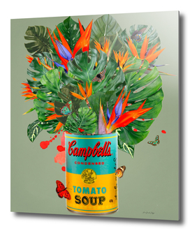 Campbell´s tropical
