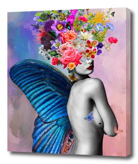 Amora flowers