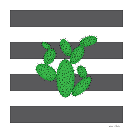 Cactus -  strips - gray and white.