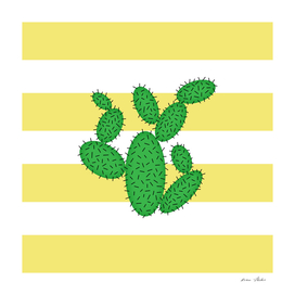 Cactus -  strips - gold and white.
