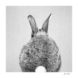 Rabbit Tail - Black & White