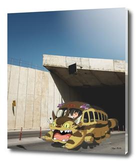 Maltese Yellow Bus
