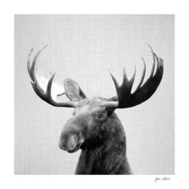 Moose - Black & White