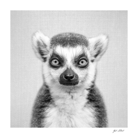 Lemur - Black & White