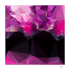 v pinky geometrical
