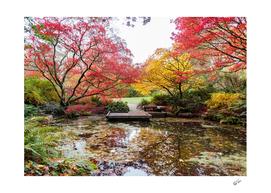 Japanese Garden Zen