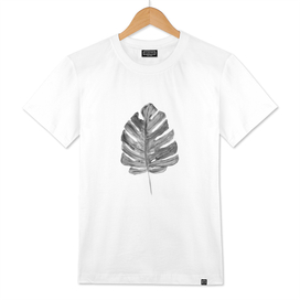 MONSTERA BLACK WHITE