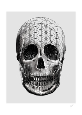 Sacred Skull