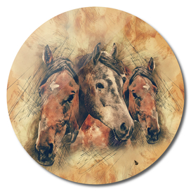 Head horse animal vintage