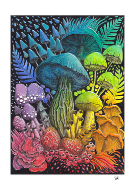 Rainbow Mushrooms