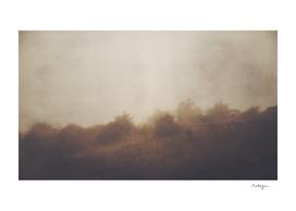 Seek Me in the Fog