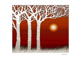 White trees at sunset