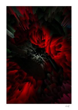 black red roses