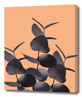 Eucalyptus Leaves Black Orange #1 #foliage #decor #art