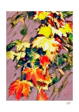 Maple leaves 2