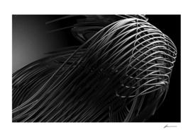 Linear Morphologies 004
