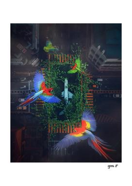 Flight Parrots by GEN Z