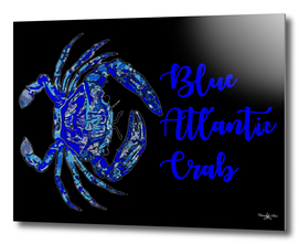 Blue Atlantic Crab