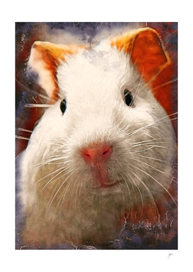 Guinea pig animal art #guineapig #animals