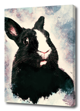 Rabbit Bunny art #rabbit #bunny #animals
