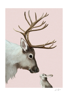 reindeer and rabbit