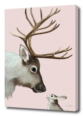 reindeer and rabbit