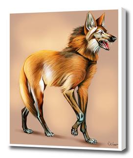 Animal lobo guará
