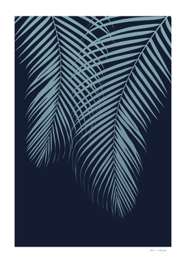 Summer Night Palm Leaves #2