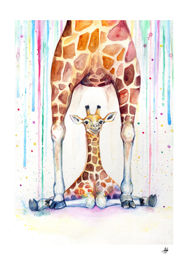 Gorgeous Giraffes