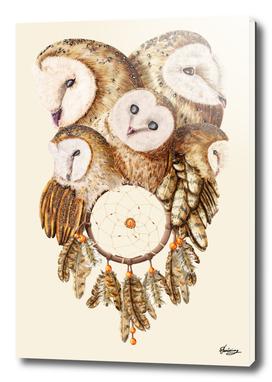 Dreamcatcher Owls