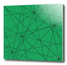 Fractal pattern of black intersecting lines on a lush green.