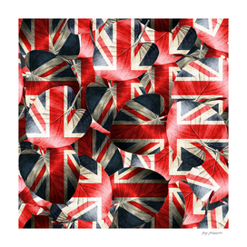England leaves