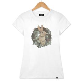 winter rabbit