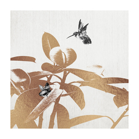 Fluttering Nature III-Square Edition