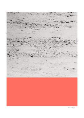 Living Coral on Concrete #1 #decor #art