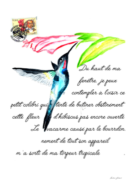 colibri french text