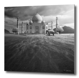 Guardians of Taj Mahal