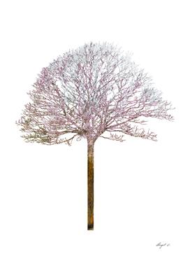 Tree VIII