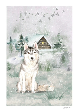 A Winters Tail