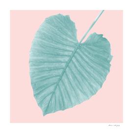 Love Leaves Evergreen Blush - Her #1 #decor #art