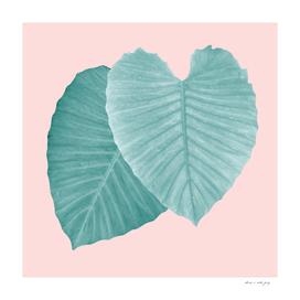 Love Leaves Evergreen Blush - Him & Her #2 #decor #art