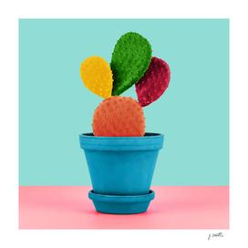 Colorful popart cactus