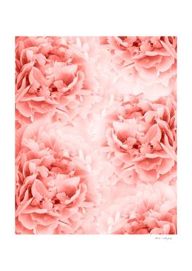 Living Coral Peonies Dream #1 #floral #decor #art