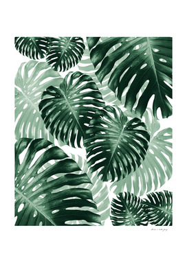 Tropical Monstera Jungle Leaves Pattern #1 #tropical #decor