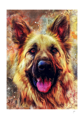 German Shepherd dog #Shepherd #dog #animals
