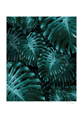 Tropical Monstera Jungle Night Leaves Pattern #1 #tropical