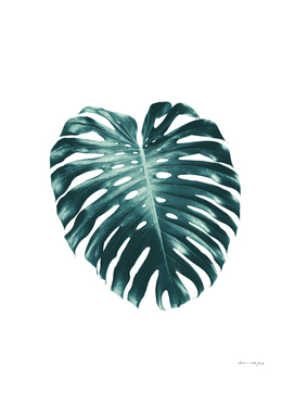 Tropical Monstera Leaf #1 #tropical #decor #art